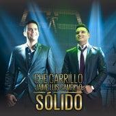 Sólido (2014) by Che Carrillo