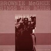 Brownie McGhee Sings the Blues by Brownie McGhee