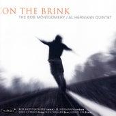 On The Brink by Al Hermann