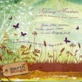 Earth Sings: Relaxing Meadows by Trammell Starks