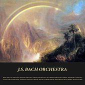 Bach: Toccata and Fugue, Fantasia and Fugue, Violin Concerto No. 1 in a Minor & Air On the G String - Pachelbel: Canon in D - Vivaldi: The Four Seasons - Albinoni: Adagio in G Minor - Mozart: Turkish March - Frescobaldi: Organ Works - Rinaldi: Works by Various Artists
