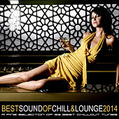 Best Sound of Chill & Lounge 2014 (33 Chillout Downbeat Tunes with Ibiza Mallorca Feeling) by Various Artists