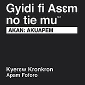 Akan Akuapem New Testament (Non-Dramatized) by The Bible
