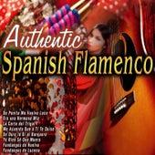 Autentic Spanish Flamenco de Various Artists