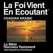 Arabic (Chadian) Bible - Injil by The Bible