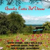 Grandes exitos del verano by Various Artists