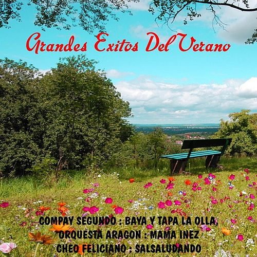 Grandes exitos del verano by Various Artists