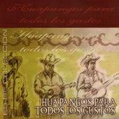 Huapangos para Todos los Gustos by Various Artists