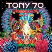 Escaleras Doradas de Tony 70