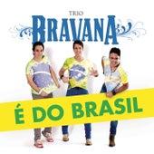 É do Brasil de Trio Bravana