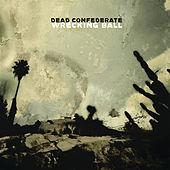 Wrecking Ball by Dead Confederate