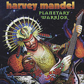 Planetary Warrior by Harvey Mandel