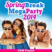 Spring Break Mega Party 2014 by CDM Project