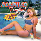 15 Exitos, Vol. 2 de Acapulco Tropical