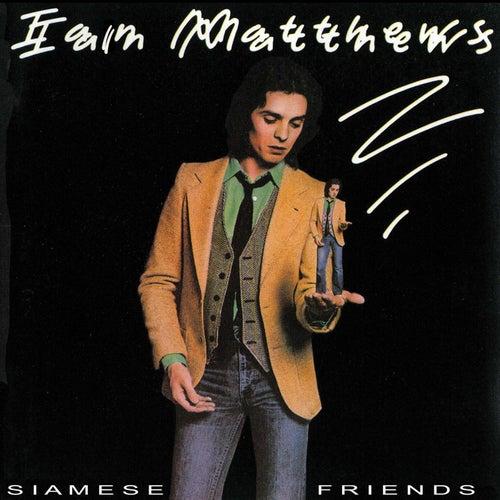 Siamese Friends by Iain Matthews