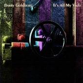 It's All My Vault by Barry Goldberg
