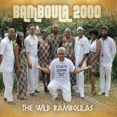 The Wild Bamboulas de Bamboula 2000