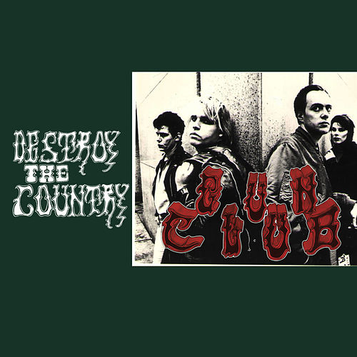 Destroy the Country by The Gun Club