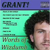 Words of Wizdumb by Grant