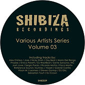 Various Artists Series 03 by Various Artists