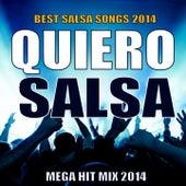 Quiero Salsa 2014 - Mega Hit Mix (Best Salsa Songs 2014) de Various Artists