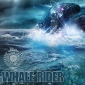 Whale Rider von Various Artists