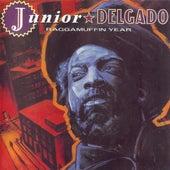 Raggamuffin Year by Junior Delgado