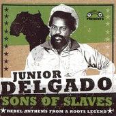 Sons of Slaves by Junior Delgado
