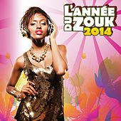 L'année du zouk 2014 by Various Artists