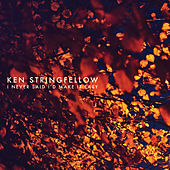 I Never Said I'd Make It Easy by Ken Stringfellow