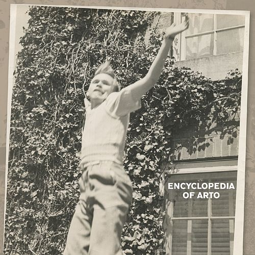Encyclopedia of Arto by Arto Lindsay