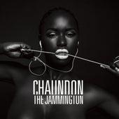 Prosperity (feat. YC The Cynic & DJ Flash) - Single by Chaundon