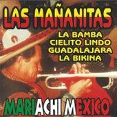 Las Mananitas (Instrumental) by Mariachi Mexico