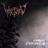 Cranial Infestation by Wretched