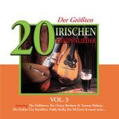 20 der Größten Irischen Kneipenlieder, Vol. 3 by Various Artists