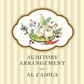 Auditory Arrangement by Al Caiola