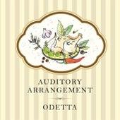 Auditory Arrangement de Odetta