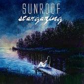 Stargazing by Sunroof