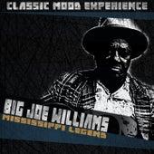Mississippi Legend (Classic Mood Experience) de Big Joe Williams
