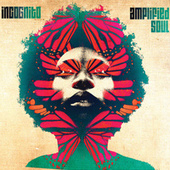 Amplified Soul by Incognito