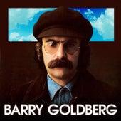 Barry Goldberg by Barry Goldberg