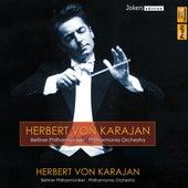 Herbert von Karajan de Various Artists