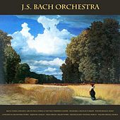 Bach: Violin Concerto, Air On the G String & the Well Tempered Clavier - Pachelbel: Canon in D Major - Walter Rinaldi: Piano Concerto & Orchestral Works - Albinoni: Adagio - Frescobaldi: Organ Works - Mendelssohn: Wedding March - Wagner: Bridal Chorus by Various Artists