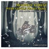 Musique pour dormir: forêt à minuit avec musique relaxante du piano de Chris Conway