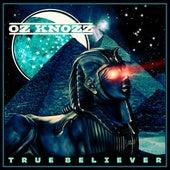 True Believer by Oz Knozz