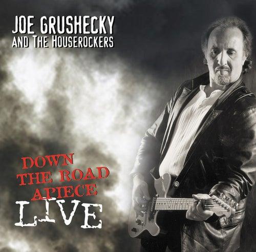 Down The Roadapiece-live by Joe Grushecky