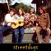 Redeyed and Restless (feat. Justin Hess) by Street Dogs