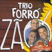 Amor & Forró Pé de Serra von Trio Forrozão