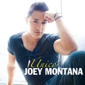 Único de Joey Montana