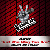 Just The Way You Are - The Voice 3 de Amir